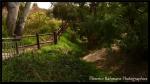 JardinBotanique028_GF